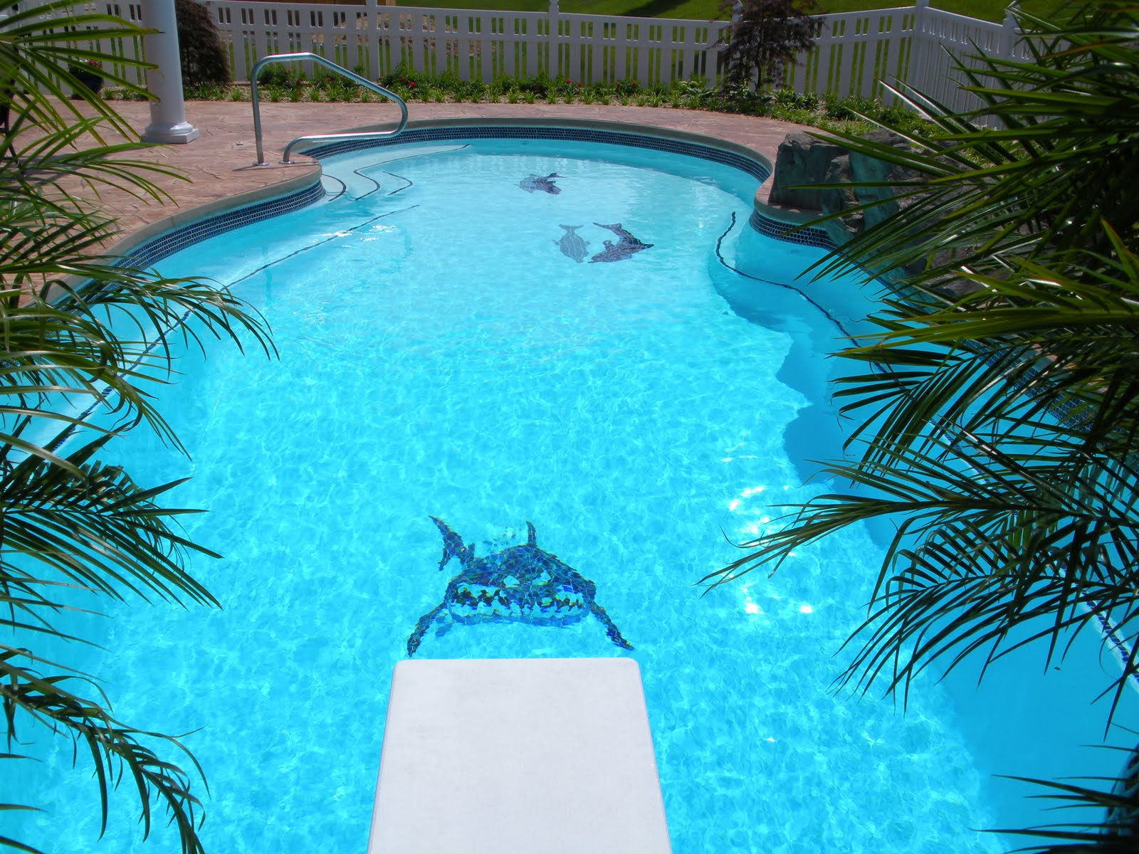 Swimming pool blog for Pictures of the pool